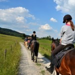 Miglior lezione di equitazione Roma
